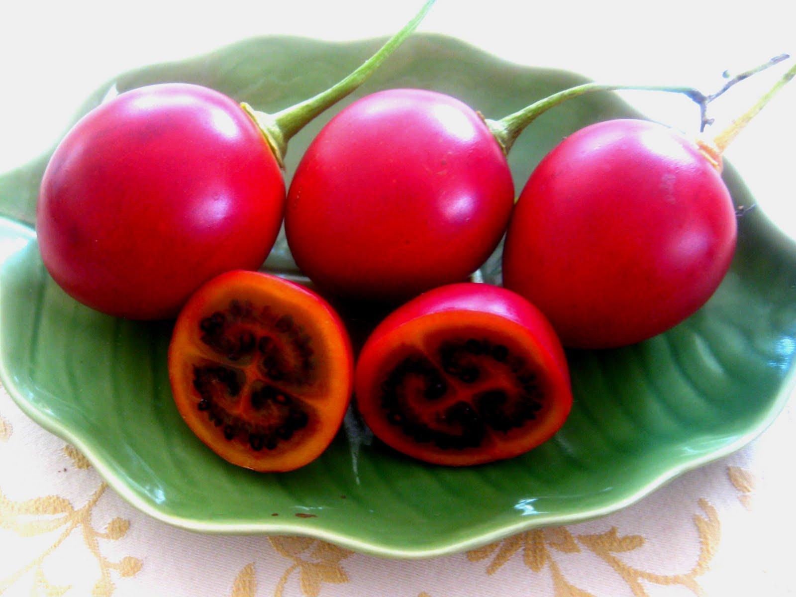 Tomate de Arbol/Tamarillo/Cyphomandra betacea | Zoom's ...